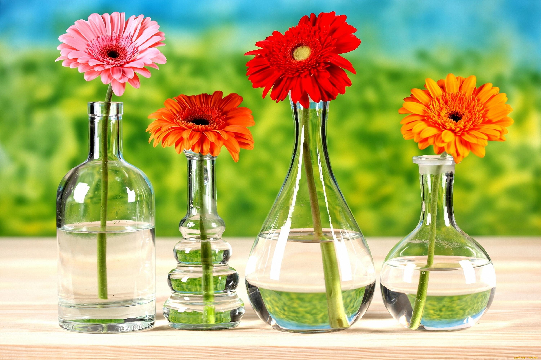 Картинки цветы и химия